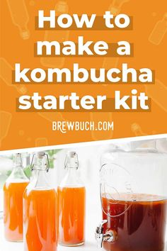 Carbonation is the best part of brewing but you'll need quality kombucha bottles! Here's how to determine the best bottles for kombucha home brewing. Kombucha Fermentation, Best Kombucha, Make Your Own Kombucha, Kombucha Bottles, Kombucha Starter, Kombucha Flavors, How To Brew Kombucha, Kombucha Recipe, Kombucha Brewing