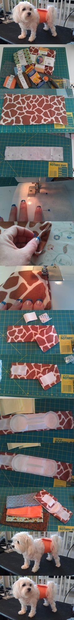 DIY Belly Bands for Dogs 2