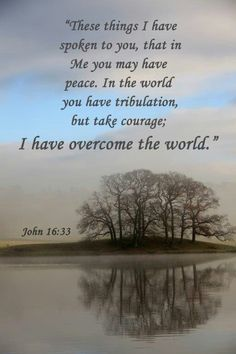 These things I have spoken unto you, that in me ye might have peace. In the world ye shall have tribulation: but be of good cheer; I have overcome the world. (John 16:33 KJV)
