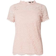 49e3682f Nude Lace and Mesh T-Shirt (160 PEN) ❤ liked on Polyvore featuring tops, t- shirts, dorothy perkins, pink top, pink tee, pink t shirt and pink lace top