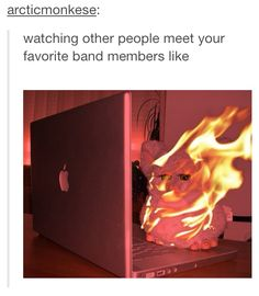 Why am I relating to a Furby on fire