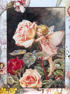 Cicely Mary Barker (1895–1973) - the rose fairy