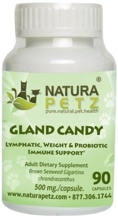 Natura Petz Gland Candy Lymphatic Weight Loss and Probiotic Immune Support for Adult Pets 90 Capsules 500mg Per Capsule * Check out this great product.(This is an Amazon affiliate link)