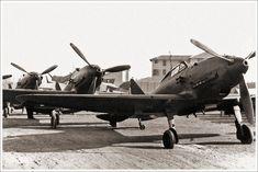 Reggiane Re.2001 Falco II