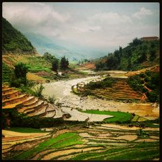 Rice paddies - Sapa, Vietnam