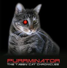 the purrminator - Szukaj w Google