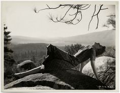 Vintage 1934 Rare Katharine Hepburn Spitfire Photograph Very Early Lovely Rare