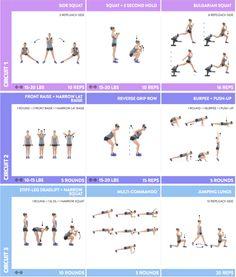 free bodyboss fitness guide pdf
