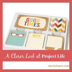 A-Closer-Look-at-Project-Life-@mercyisnew.com_.jpg (540×540)
