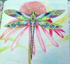 Johanna basford enchanted forest coloring Primacolor Premiere dragonfly