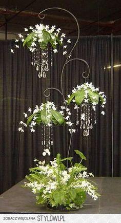 Orquídeas Dendrobium brancas com cristais. Fotografia: BETp no Stylowi.pl