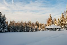 Gazebo in Ruth Arcand Park, Anchorage, Alaska during 2011-2012 winter season, the snowiest on record.