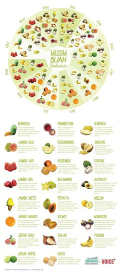 Need to know, Indonesian fruits season Infografis: Musim Buah di Indonesia - House of Infographics Pitaya, Healthy Tips, Healthy Recipes, Healthy Food, Fruit Picture, New Fruit, Fruit Juice, Indonesian Food, Indonesian House