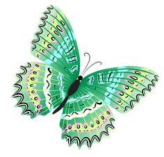 Borboleta verde PNG Clipe