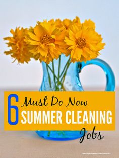 6 summer #cleaning jobs that I really need to do right now ... cos I will pay, pay, pay if I don't ...