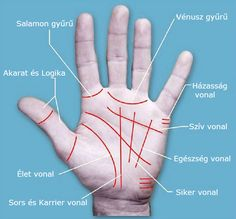Palmistry is the art of describing or predicting the future through the interpretation of palm lines. There are four foremost lines in hand. They might have splits in them or they. Palm Reading Charts, Meaning Of Palm, Palm Lines Meaning, Mental Confusion, Troubled Relationship, Deeper Life, Psychic Abilities, Health Facts, Reading