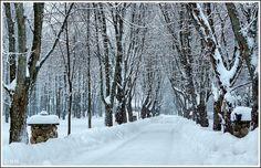* Paysage d'Hiver* - Notre-Dame du Mont-Carmel, Quebec