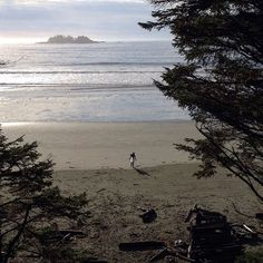 The great Pacific Northwest. Are you living your most authentic life? #tofino #morningmagic #trulywestcoast #pnwlife #liveyourbestlife #findyourpassion #viawesome #vancouverisawesome #discovervancouver #explorebc