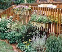 Image result for landscaping ideas for around the deck
