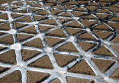 Close-up-of-the-Geometric-Traingular-Lattice-in-Sand.jpg (1000×704)