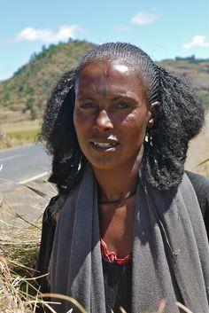 Abessijns plateau - Ethiopië - Ethiopia  Langs een mooie bergachtige weg rijden we zuidwaarts naar Addis Abeba, de hoofdstad van Ethiopië. Dit is een groene vruchtbare streek en onderweg zien we mannen en vrouwen van de Tigray en van de Amharen. Dit zijn vooral landbouwers.  Het is oogsttijd en bundels met het rijpe koren worden op de rug gebonden en meegenomen naar huis.  Zowel de mannen als de vrouwen doen het harde werk.   Tigrayvrouwen vlechten hun haar in de typische shirubastijl. Het…