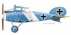 Albatros D.V - 1917