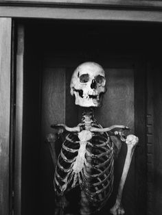 """""""Dorian Gray escupiendo en mi retrato."""" #skeleton #photography"""