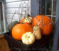 With these Fall Porch Decorating Ideas, you can have a pretty and festive fall front porch!