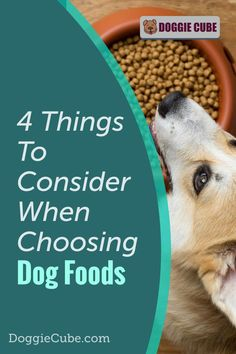 There are several factors to consider when choosing the right food for your dog. Different dogs have different nutritional needs at different stages in their lives. Here are some things to consider when selecting the food you'll give your dog. Dog Nutrition, Dog Diet, Medical Problems, Dog Care Tips, Homemade Dog Food, Nutritious Meals, Dog Grooming, No Cook Meals, Factors