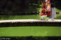 彦根城ながめて*和装前撮り の画像|*ウェディングフォト elle pupa blog*