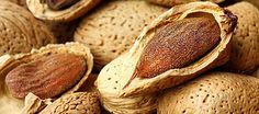 Almonds Italian Recipes, Noto, Bread, Cheese, Almonds, Cooking, Desserts, Nature, Sicily