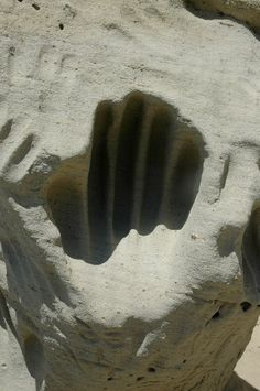White Mountain, Wyoming.  Presumably the hand print was made when the stone was soft clay.