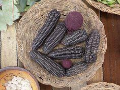 ROXO: água de fervura do milho roxo, que eles chamam de maíz morada. Este milho é muito usado para fazer a bebida típica, 'chicha morada'.