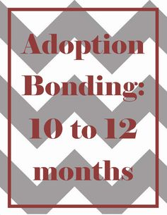 While welcoming an older baby or toddler into your family comes with a host of challenges. If you've adopted an older baby, you're probably still working on bonding with your babe, even at one year old. Here are a few tips to help facilitate the process as you get ready to celebrate your baby's first birthday.
