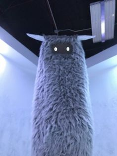 Exploring New Mexico: Meow Wolf