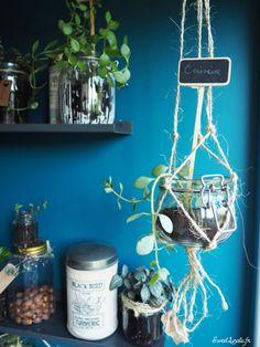 Idées déco : étagères végétales Decoration, Turmeric, Home Decor, Diy Room Decor, Green, Noel, Decor, Decorating, Decorations