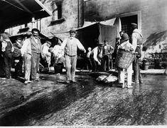 Il Mercato del tonno a Palermo 1895 ca. Alinari, Fratelli Archivi Alinari-archivio Alinari, Firenze
