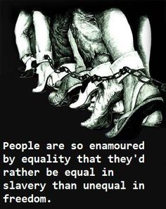People are so enamored by equality that they'd rather be equal in slavery than unequal in freedom. #Think
