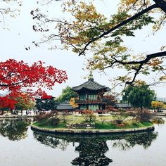 Fall can be so romantic. Seoul, Gyeongbokgung Palace