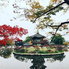 Fall can be so romantic. Seoul, Gyeongbokgung Palace