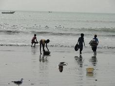 Playa de Gambia. Proyecto de voluntariado en Gambia