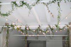 Lights + Plants