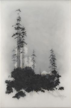 Layered landscape, by Brooks Shane Salzwedel (graphite pencils, velum paper and resin).