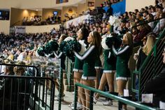 Bemidji State Hockey Cheerleaders cheering in the crowd