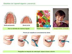 Raspallar-se després de cada àpat i abans d'anar a dormir Temps mínim: 2 minuts Anar al dentista de manera regular Reduir-...
