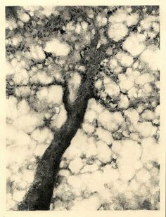 Monotype Tree Fine Art Print OOAK. $200.00, via Etsy.