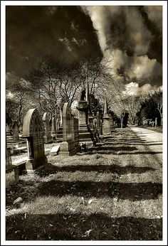 grave shadows Cemetery Monuments, Cemetery Statues, Cemetery Headstones, Old Cemeteries, Cemetery Art, Graveyards, Graveyard Girl, Gardens Of Stone, Dark Places