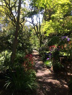 Sonoma Horticultural Nursery