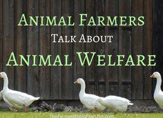 How do farmers feel about animal welfare?