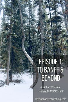 Sharing our experiences in some of Canada's finest places including Banff National Park, Lake Louise and Kootenay National Park Banff National Park, National Parks, Travel Tags, Adventure, World, Places, Adventure Movies, The World, Adventure Books